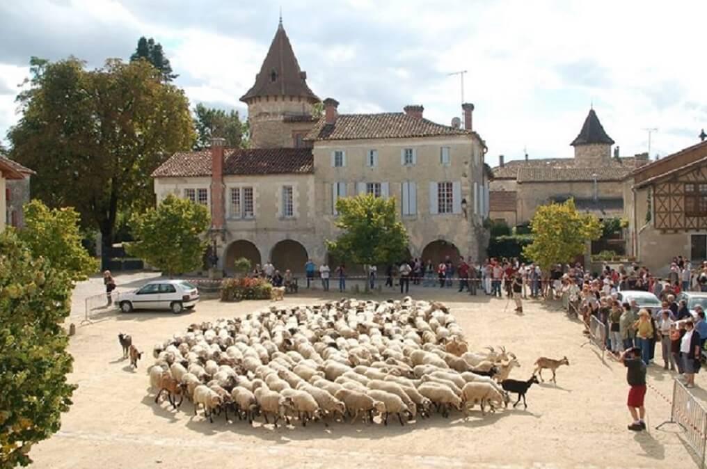 La Pastorale en Bastide médiévale