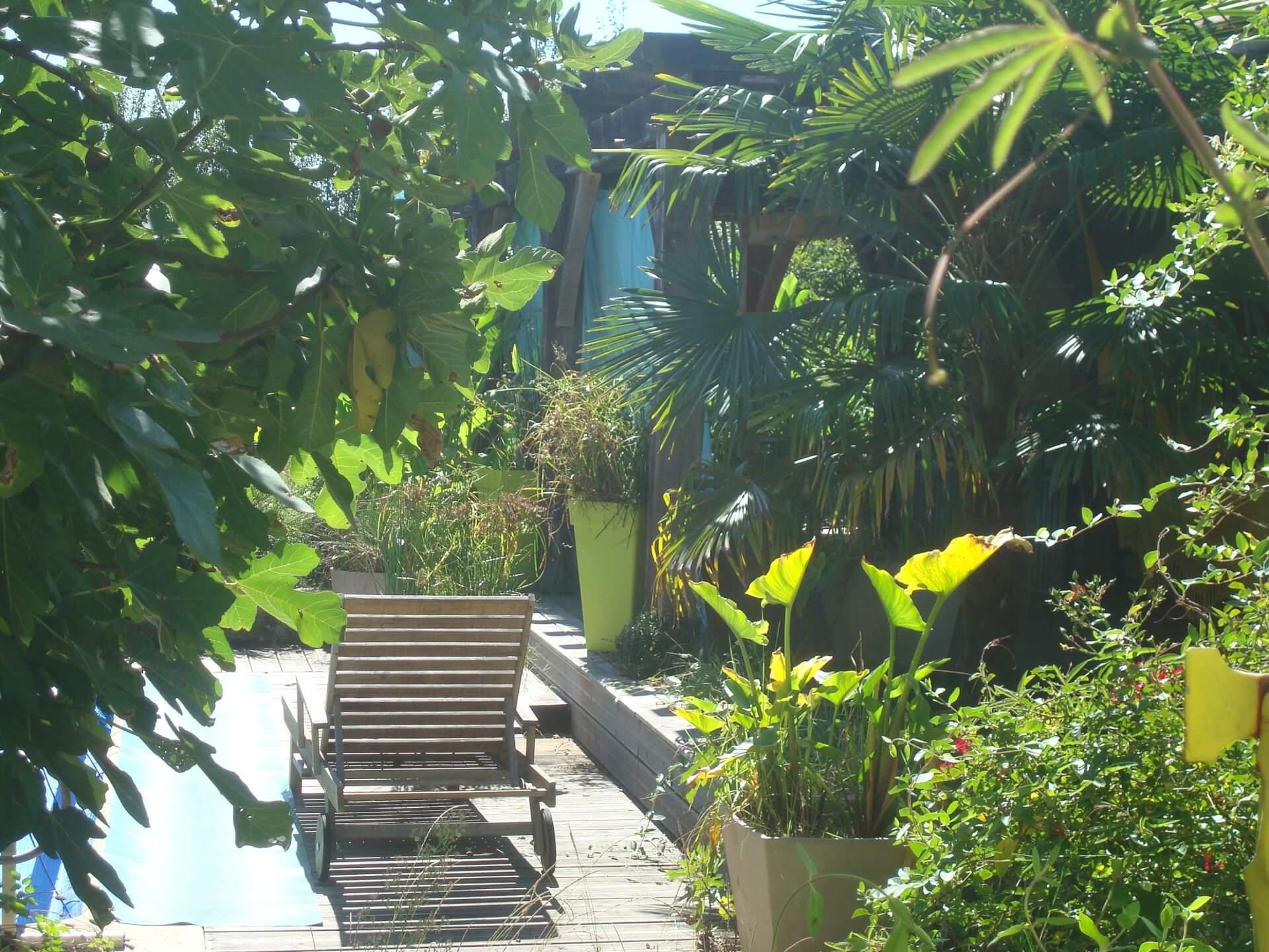2020 - Détente Tropicale/Tropical Bathing